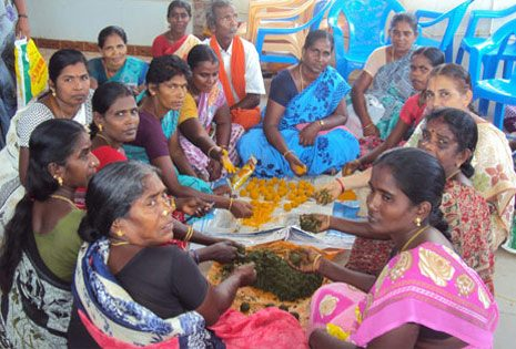 Preparation of Herbal Masala Bolus for Animals by Self Help Group Members